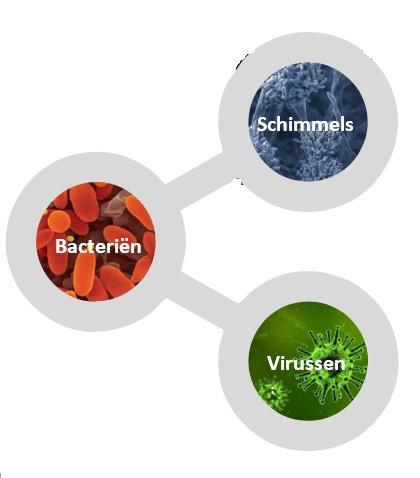 virussen, bacterien, schimmels en vieze luchtjes